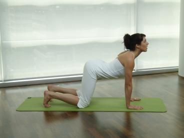 Cviky a cvičení - bederní svaly a bederní páteř