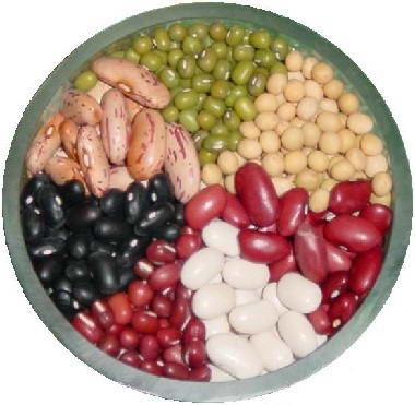 Kalorie luštěniny - kalorická tabulka